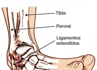 esguinces de tobillo anatomía