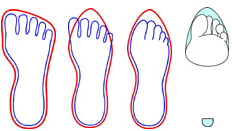 calzado saludable tipos de horma